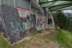 RHM_1637-1384.jpg (RHMImages) Tags: california bridge landscape graffiti us nikon unitedstates auburn foresthill d810