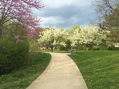 Spring (silviya_rankova) Tags: park spring outdoor walk