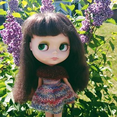 Though it's a bit of a chilly day, Anouk is enjoying the early blooming lilacs in her sassy @shershe dress and shrug 😊