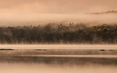 Morning serenity (jaros 2(Ron)) Tags: light mist lake dawn nikon lightroom algonquinprovincialpark formatthitech slitndgrad