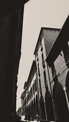 Via Zamboni - Bologna (teresabarbieri) Tags: city university universit bologna citycenter citt zamboni urbanstyle oldbildings