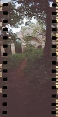 20160530-SprocketRocket (9) (photog_at) Tags: lomography sprocketrocket