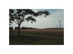(Sara Fiore ph.) Tags: sky nature landscape grosseto reportage