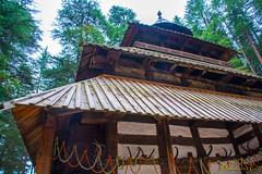 DSC_1959 (Amishrit) Tags: mountain snow rock forest garden landscape temple shimla flora nikon manali kulu chandigarh kufri rohtang hadimba d7100 vasista