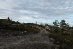DSC08248 (Rune Venes) Tags: norway no sognogfjordane