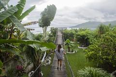 Live (ShurperMario) Tags: bridge lake verde green water clouds lago agua nikon guatemala tikal nubes peten elremate 1685vr d5100