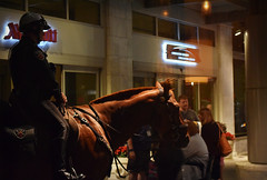 On Watch at the Marriott (MTSOfan) Tags: street horse dawn police sidewalk cop mounted lawenforcement annualconference downtownlancaster