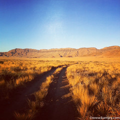 Let's take a stroll... (kamjey) Tags: travel mountains yellow photography desert fields namibia hoodialodge