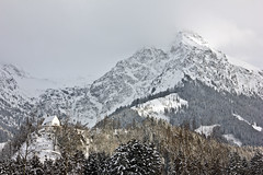 Towering over Fischen (Nataraj Metz) Tags: schnee trees winter mountain snow alps fog forest canon germany bayern deutschland bavaria europa europe nebel chapel berge alpen wald bume deu gebirge kapelle allgu oberallgu fischen rubihorn allgueralpen alpmountains eos550d fischenimallgu eosrebelt2i tamron18270mmf3563diiivcpzd