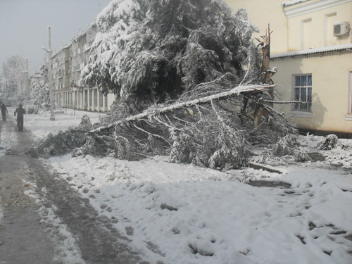 Последствия снегопада в Курган-тюбе (25)