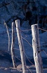 Tierra de todos (Zulema Meurer) Tags: wood trip viaje horse mountain argentina azul stone montagne trekking caballo cheval cow wire madera nikon pierre cerro sierras montaa crdoba siege sige bois piedras mountainrange lmite cerco limiter champaqu cblage d3100