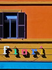 Colour, Rome (TV DiSKO) Tags: rome colour window shutter fiori