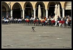 .. emarginazione .. (Shot__3115 F) (Ziozampi) Tags: primavera canon eos italia persone fav 2012 citt padova veneto eos450d 450d abitato xpool cameraeos oneofmypics 04aprile imgdigitale allegrisinasceosidiventa