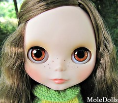 New Blythe Custom Doll N.33 by MoleDolls