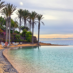 Relaxing (Pilar Azaa) Tags: espaa flores luz sunrise dawn mar spain plantas fuerteventura relaxing paz palmeras colores amanecer select vegetacin islascanarias tranquilidad quietud costacalma playaesmeralda superlativas 100commentgroup pilarazaa natureandpeopleinnature rememberthatmomentlevel1 rememberthatmomentlevel2