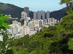 Botafogo District (Leonardo Martins) Tags: brazil green nature rio brasil riodejaneiro lumix bresil brasilien panasonic exotic tropical mirante brsil pedro sudeste bigstone fz18 panasoniclumixfz18