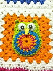IMG_0210 (Melissa and Craig) Tags: flower quilt crochet yarn afghan owl grannysquare crochetflower crochetowl