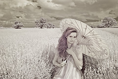 Marley Hamilton (Elm Studio) Tags: uk trees summer england sky copyright clouds umbrella geotagged model afternoon lavender somerset parasol infrared dreamy copyrighted jeffmorgan photoplus faulkland elmstudio somersetlavender horsepondfarm marleyhamilton geo:lat=5128775529 geo:lon=237523556 jeffelmstudiocom wwwelmstudiocom