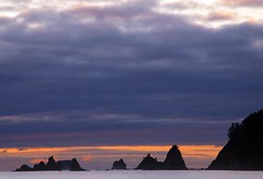 Point Alava, Olympic Nat'l Park (d_silva1) Tags: northerncascades ozetteolypicpeninsula