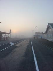 Foggy morning at Pokeno (Umedha Hettigoda) Tags: fog dawn day regionwide flickrandroidapp:filter=none