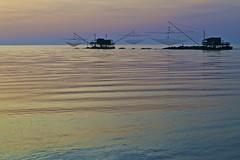 Net and sunset (MauFliOfficial) Tags: light sunset sea italy colors nikon europe mediterraneo italia tramonto mare tuscany toscana eropa marinadipisa abigfave