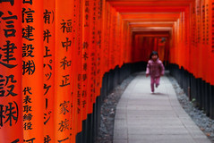 Torii and kid at Fushimi Inari shrine  Kyoto (Julien Mailler) Tags: world travel orange japan asian japanese julien kid kyoto shrine asia child inari path religion running nippon asie shinto kansai torii japon nihon japonais nationalgeographic asiatique fushimi shintoism reflectionsoflife lovelyphotos jules1405 unseenasia shintosme earthasia mailler