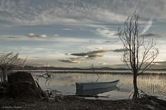 A little boat (Massimo_Discepoli) Tags: sky tree water clouds landscape umbria trasimeno