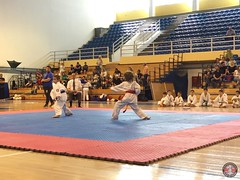 stefanou_15_5_2016_knockdown_72