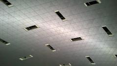 Doha HIA: Terminal 1 check-in, ceiling detail. (A380spotter) Tags: ceiling detail checkin landside terminal1 one مطارحمدالدولي hamadinternationalairport hia newdohainternationalairportndia 2014 hok hellmuthobatakassabaum bechtel othh doh الدوحة doha قطر دولةقطر dawlatqaṭar stateofqatar