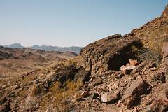 5R6K2812 (ATeshima) Tags: arizona nature havasu