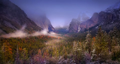 Into the mist (Sapna Reddy Photography) Tags: winter mist mountain snow mountains nature colors fog landscape flow nationalpark seasons nps outdoor foliage yosemite mountainside tunnelview