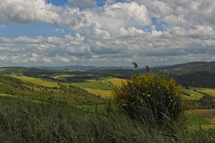 Bei Volterra (Wolfgang.Grilz) Tags: italien landscape italia unesco tuscany siena montalcino pienza montepulciano toscana valdorcia toskana sanquirico tuscanlandscape tuscanspring springitaly