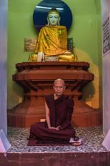 Monk praying at Shwedagon Pagoda (ReinierVanOorsouw) Tags: reizen myanmar birma burma travelling travel travelstoke reiniervanoorsouw sony sonya7r sonya7rii a7rii asia asya azie yangon yangoon rangon rangoon shwedagon shwedagonpagoda pagoda people human asian asianpeople inasia azi travels undiscovered colour colours