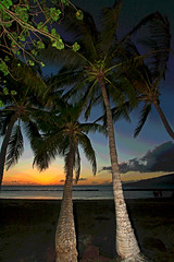 end (bluewavechris) Tags: ocean sunset sea sky sun tree beach water rock clouds hawaii lava sand scenic maui palm posterized fishpond