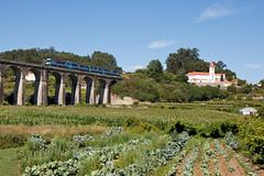 A essência da Linha do Minho (Nohab0100) Tags: train railcar cp comboio minho automotora 0450 durrães
