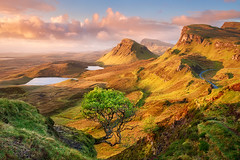 Trotternish (mibreit) Tags: light tree nature sunrise landscape scotland bravo europa europe view isleofskye landschaft sonnenaufgang jurassic schottland quiraing trotternishridge