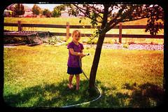 Watering Grampa's Tree