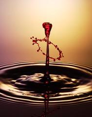 Punch (MaxShock) Tags: water waterdrop waterdrops waterdroplets waterdroplet waterdropcollision highspeedwaterdrops