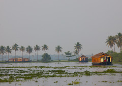 Houseboats Sailing On Kerala Backwaters, Alleppey, India (Eric Lafforgue) Tags: travel india colour tree tourism nature water horizontal river outside outdoors photography boat canal asia day houseboat tranquility nobody nopeople kerala palm journey palmtree transportation series weathered copyspace relaxation idyllic onthemove scenics backwater traditionalculture alleppey keralabackwaters tranquilscene alappuzha 0618 traveldestinations colorimage gettingawayfromitall tropicalclimate horizonoverwater nauticalvessel keralabackwater fanpalmtree