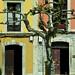 Casas Ribadesella Asturias