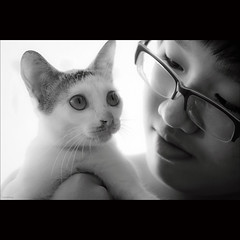 Friendship [ EXPLORED ] (-clicking-) Tags: life girls friends two portrait blackandwhite bw cute monochrome animals silhouette cat children glasses blackwhite eyes child friendship faces emotion candid duo adorable streetphotography kitty streetlife vietnam feeling lovely cutecat visage nocolors friendshipday lovelycat