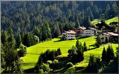 Verde dolomiti (Luigi Alesi) Tags: italy verde green nikon scenery italia unesco val di trento paesaggio trentino dolomites dolomiti dolomiten patrimonio soraga fassa d90 greenbeautyforlife