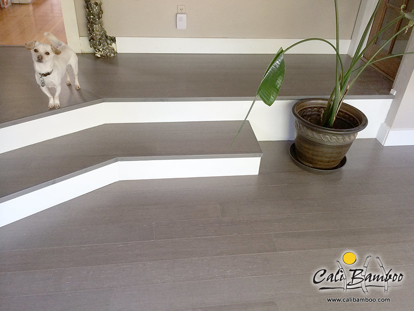 Grey hardwood floors moonlight fossilized bamboo cali bamboo get free samples solutioingenieria Choice Image