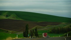 Truckin thru The Palouse (Alvin Harp) Tags: washington travels farming adventure journey april rollinghills shadesofgreen palouse 2016 palousescenicbyway teamsony sonya7rii alvinharp