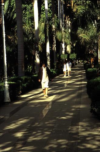 """Ägypten 1999 (064) Assuan: Botanischer Garten, Elnabatat's Island • <a style=""""font-size:0.8em;"""" href=""""http://www.flickr.com/photos/69570948@N04/26563631903/"""" target=""""_blank"""">View on Flickr</a>"""