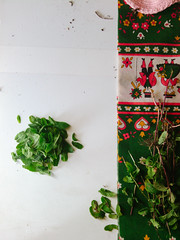 It'll pass (elleborgo) Tags: old white house green home leaves vintage table phone tea small mint minimal tablecloth granny minimalist spearmint peppermint comfy
