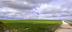 paisaje 87 (rokobilbo) Tags: sky sun green clouds landscape countryside meadow land planting castilla