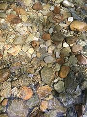 154 - shimmering (md93) Tags: water river stream flat crystal stones clear burn lochlomond 366 sallochy
