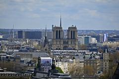 2016.04.14.033 PARIS - La grande roue,  Notre Dame (alainmichot93) Tags: paris france seine architecture ledefrance notredame cathdrale toit arbre parc mange placedelaconcorde granderoue 2016 parcdestuileries