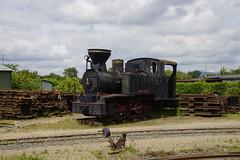 Dampflokomotive in Frankfurter Feldbahn Museum 21-05-2016 (marcelwijers) Tags: museum frankfurter dampflokomotive feldbahn 21052016